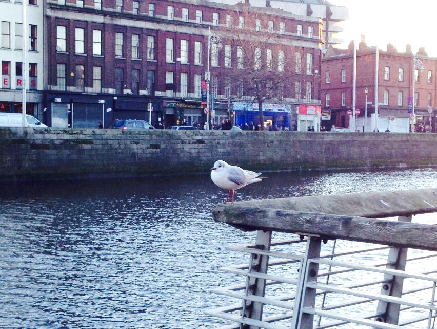 Tipps Dublin 5