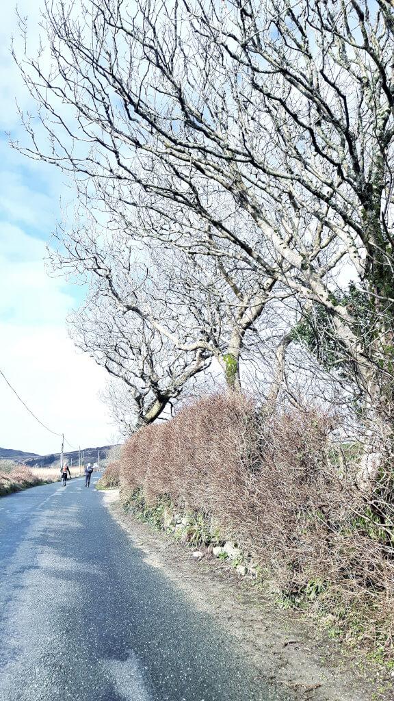 Irland Reisetipps Galway Connemara