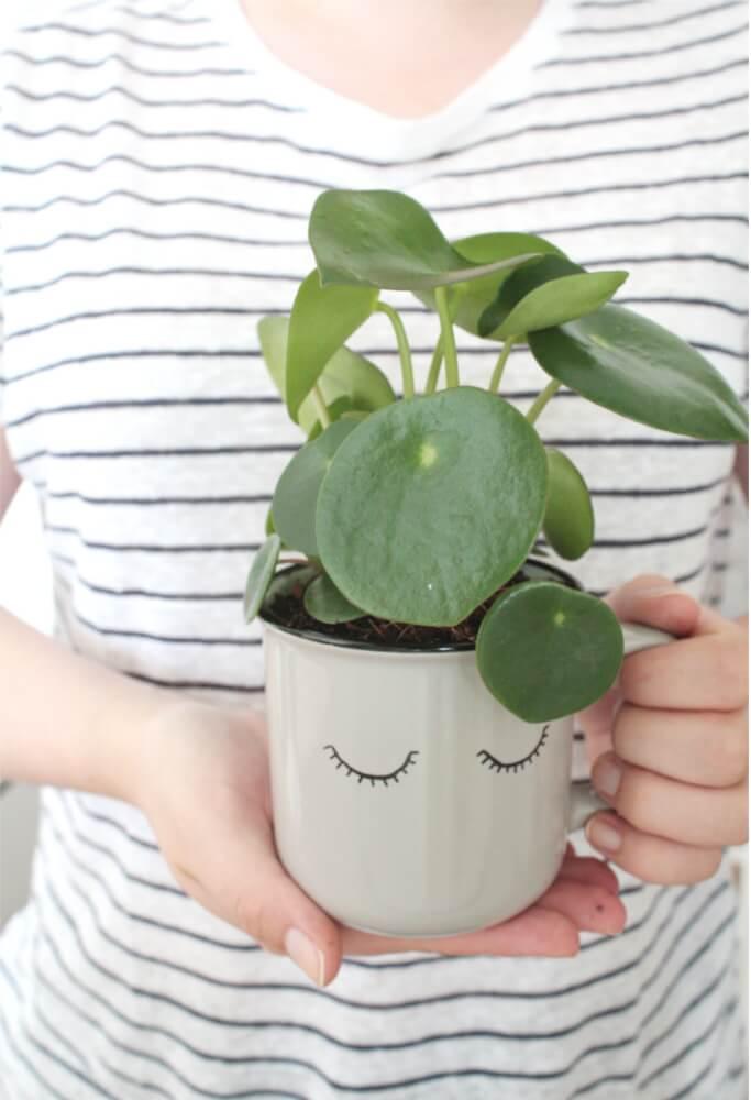 Sukkulenten in Tassen pflanzen DIY Blog Muenchen Basteln Selbermachen