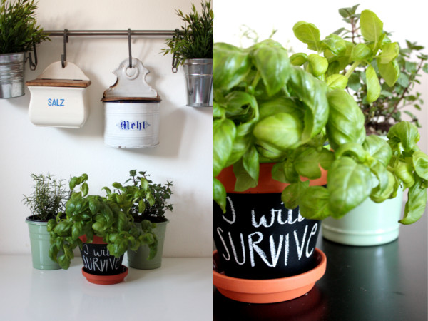 DIY Blumentopf mit Tafelfarbe 7