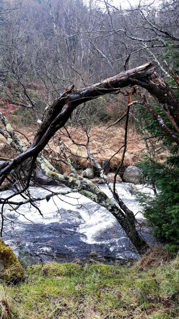 Irland Reisetipps Glendalough